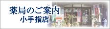 薬眞堂薬局 小手指店